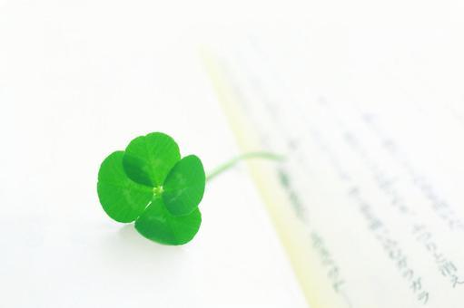 Four leaf clover reading