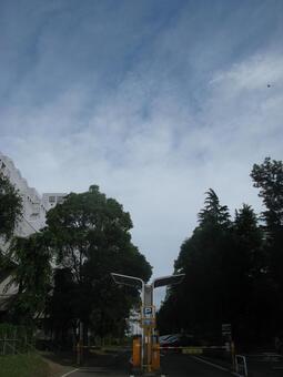 Skies and clouds 7