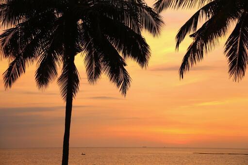Beach resort 282