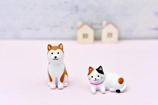 Image of dog and cat pet