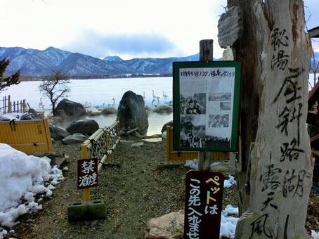 호수와 노천탕과 백조