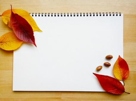 Sketchbook on the desk and background of fallen leaves and acorns 0113