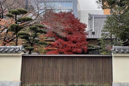 Torinji Gate Tomomiji