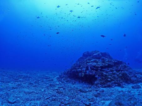 Mysterious blue seabed / Okinawa / Kerama Islands