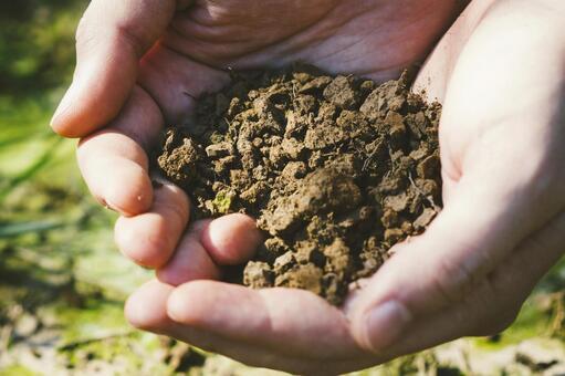 Hand holding soil 2