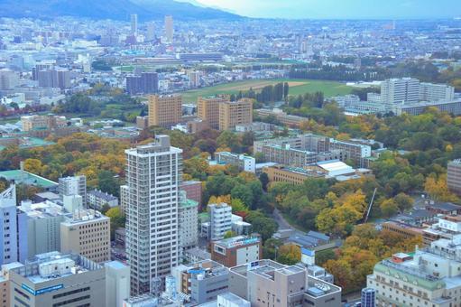 Hokkaido University seen from JR Tower