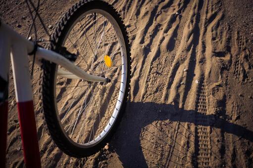 自行车轮胎10