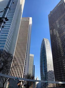 신주쿠 고층 빌딩 군 1