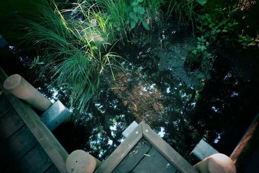 Spooky waterside