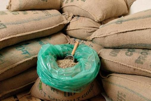 Raw coffee beans procured from Ethiopia