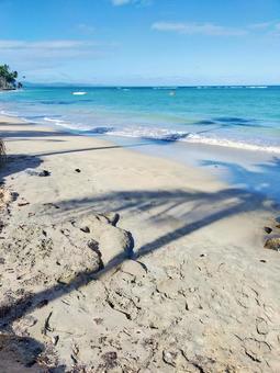 Dominica sand art mermaid