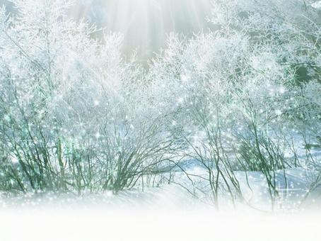 冬背景12
