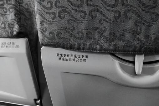 飞机/飞行中