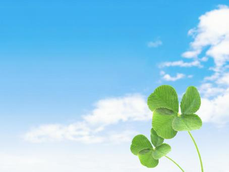 Two four-leaf clovers and blue sky