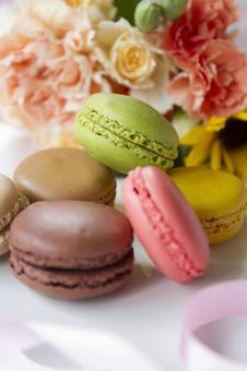 Colorful Macaron _ 10
