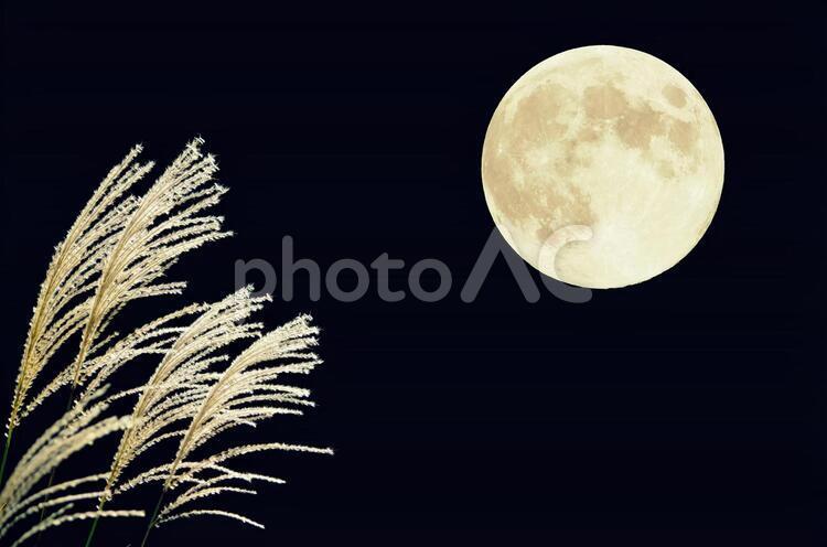 ススキと満月-横型の写真