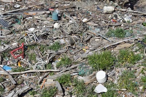 垃圾問題環境問題沿海殘骸