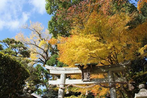 原神社的秋天的顏色