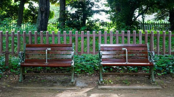 Meiji Jingu Gaien, Ginkgo tree-lined bench