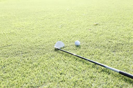 Grass club and golf ball 11