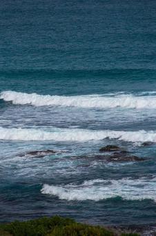 타코 이스 빛 바다