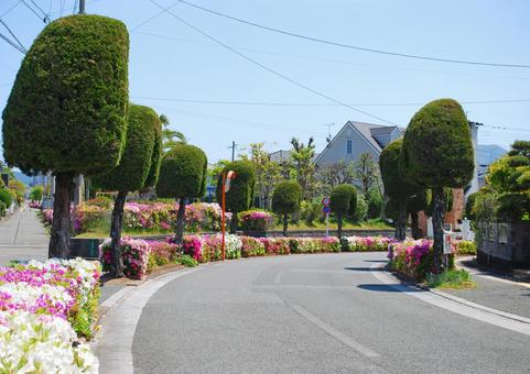 Showa residential area curve
