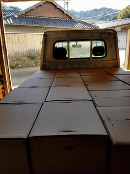 Shipment cardboard