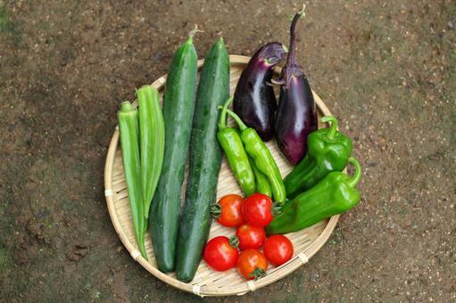 Summer vegetable platter 2