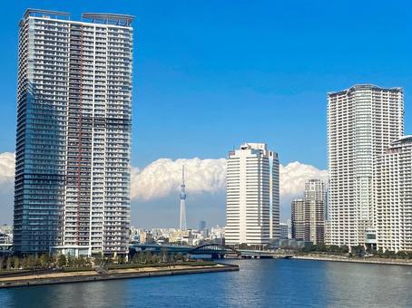 Tokyo Sky Tree and Toyosu condominiums