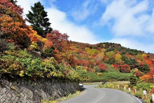 Bandai-Azuma Skyline Autumn Leaves 17