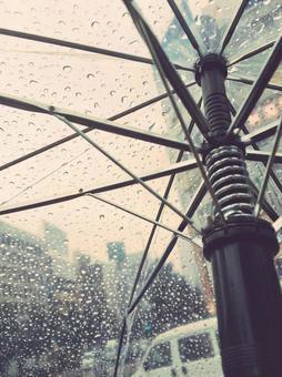 비오는 날 비닐 우산 아래