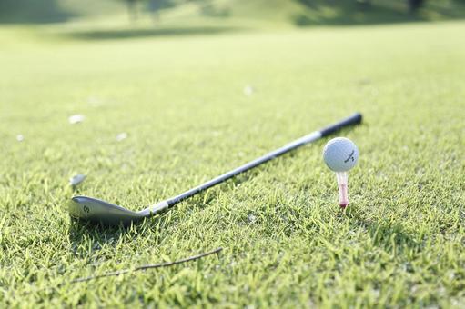 Grass club and golf ball 20
