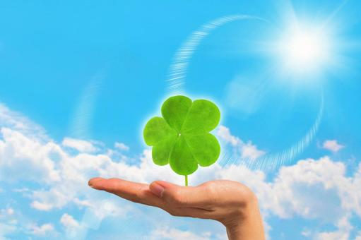 Clover in the palm of your hand 2