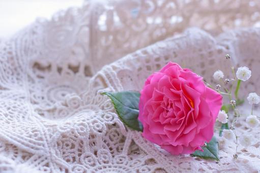 Rose flower one wheel
