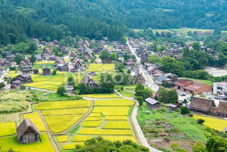 白川郷の風景の写真