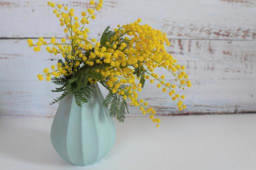 [Interior flower] Wood background and mimosa e