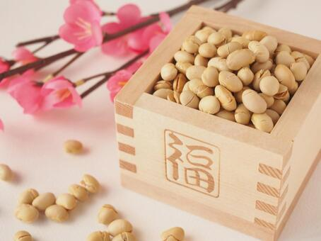 Setsubun beans