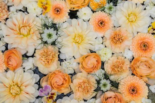 Warm colors flowers