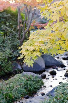 Fall landscape 32