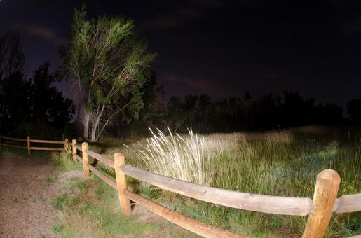 Night view 4
