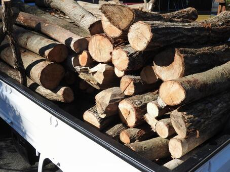 Firewood and Light Truck 03