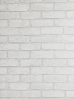 White brick background portrait