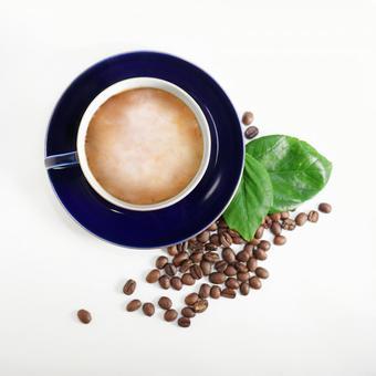 커피 맛있는 라떼 커피