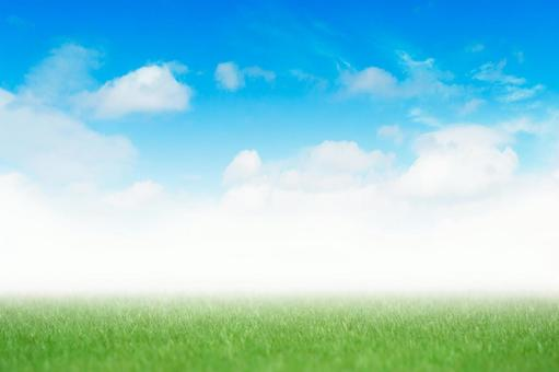 Background material: texture background of grass and fresh blue sky