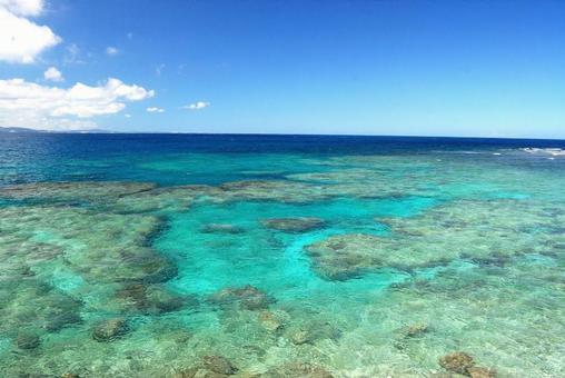 Okinawa Beach Resort 5