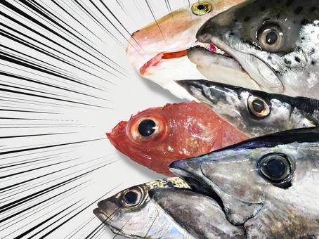Fish festival!