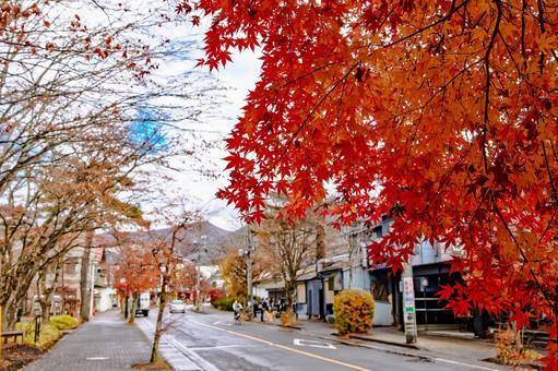 Autumn leaves in Karuizawa