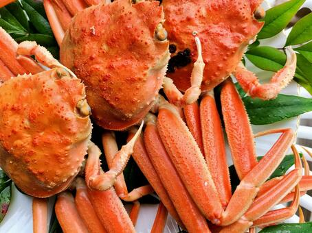 Delivery Kobako Crab Kobako Crab Gourmet Zuwai Crab SDGs Depletion Sustainable Sustainable Material Background
