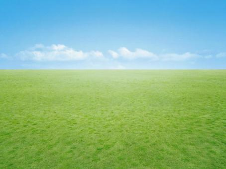 Sky and lawn horizon