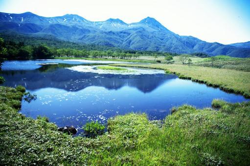 Shiretoko of a world-renowned world natural heritage